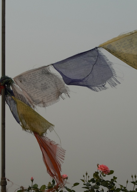 Buddhist Prayer Flags. John Callaway 2010