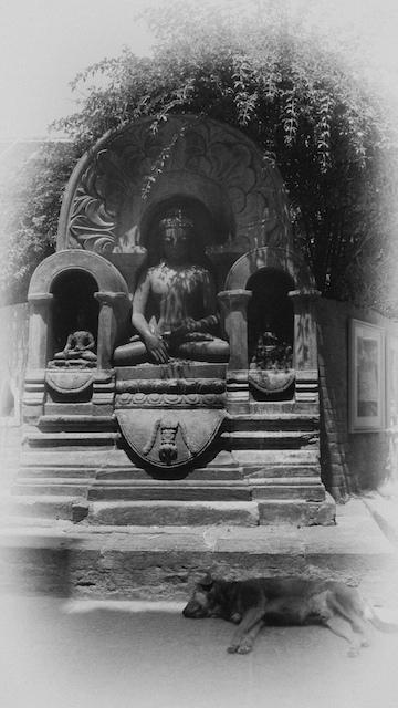 Swayambhunath, Kathmandu. John Callaway 2010