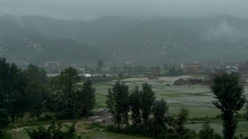 Budol. Rice fields in the rain. John Callaway 2010