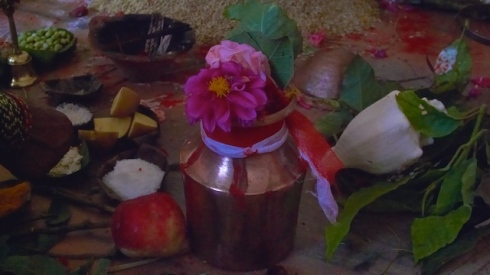 Rudra Puja offerings. John Callaway 2010