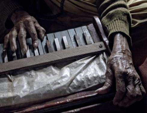 Harmonium. John Callaway 2010
