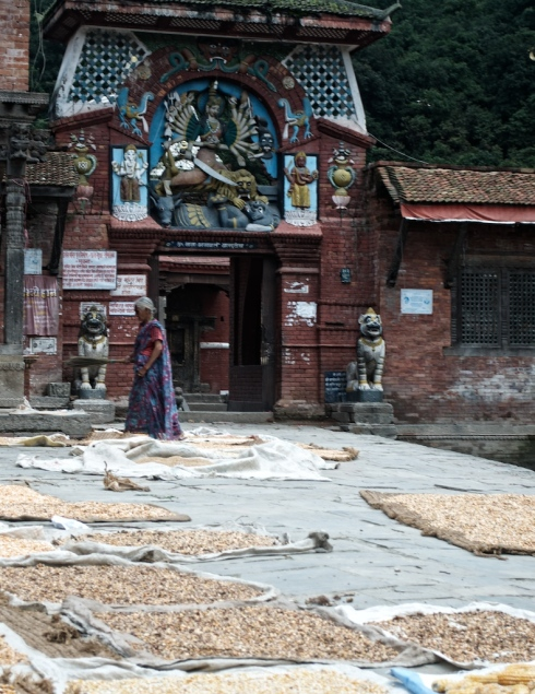 Drying maize. Chandeshwori, Banepa. John Callaway 2010