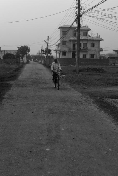 Rupandehi. John Callaway 2010