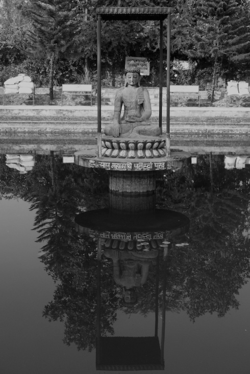 On reflection... John Callaway 2010