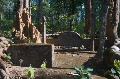 Termite mound. John Callaway 2012