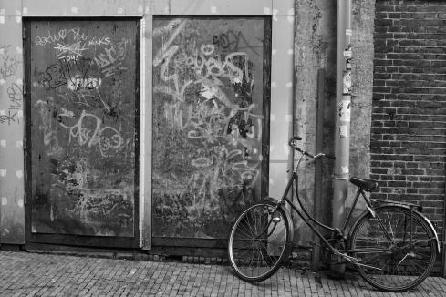 Cycle… John Callaway 2013