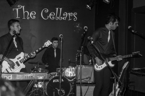 Surfin' Birds @ The Cellars, Eastney. John Callaway 2014