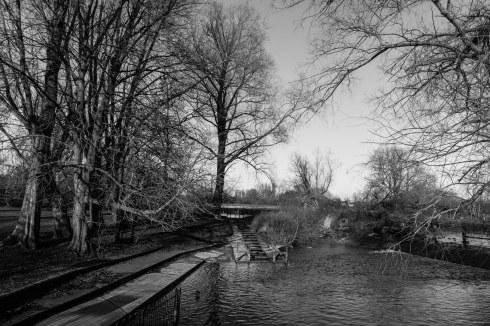 River Cherwell.. John Callaway 2014