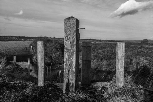 Fence Posts.... John Callaway 2015