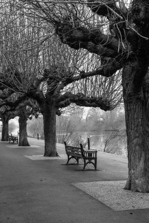 River Severn @ Worcester. John Callaway 2015
