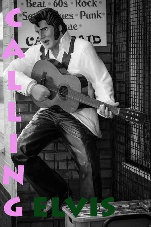 Calling Elvis... John Callaway 2015