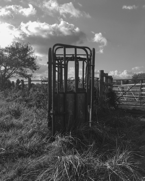 Gated...? [John Callaway 2017]