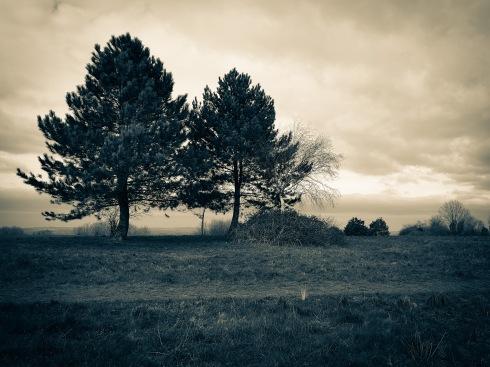 ...@ the top of Portsdown Hill